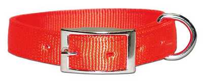 "Collar - 1"" Regular Nylon"