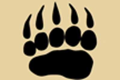 BEAR TRACK DECAL